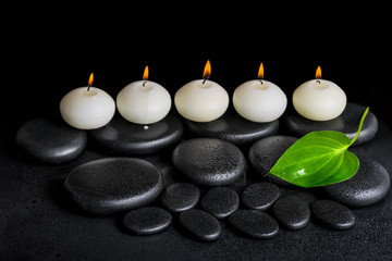 spa concept of row white candles and green leaf on black zen sto