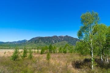 初夏の日光戦場が原 正面に山を望む