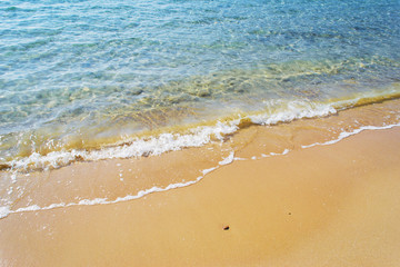 golden shore