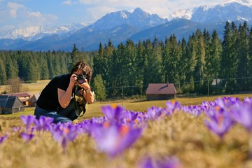 Woman photographer and crocuses in the spring, Poland