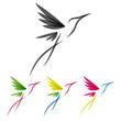 Colored stylized colibri