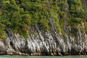 Rocky cliff and tree