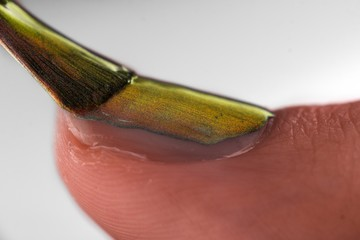Close up view of nail polishing
