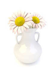 Daisy flowers in a white porcelyn vase