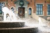 Fountain in Aalborg