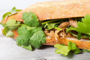 Banh Mi, Vietnamese sandwich filled with shredded chicken and co