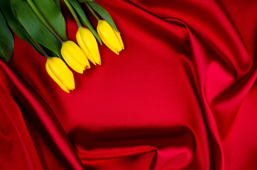 yellow tulips lying on red luxury abstract background frame