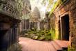 Ta Prohm Temple, Angkor, Cambodia - 80216848