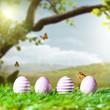 Ostereier vor Frühlingshintergrund