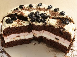 chocolate cake with chocolate icing and pink filling