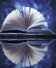 open book reflected in water. Winter story
