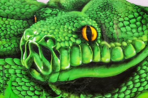 Green snake head graffiti on concrete wall