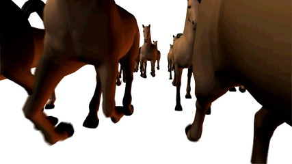 Horses 3D running front view, loopable.