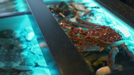 Crab sits in water of aquarium with rocks at restaurant