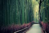 Fototapety Bamboo Grove