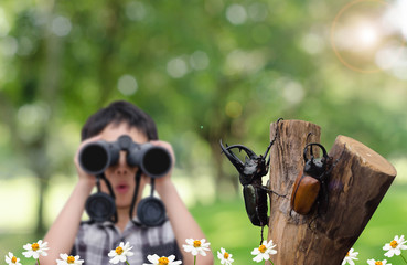 Rhino beetle over un-focus boy with binocular and background of