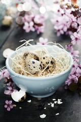 Quail easter eggs in a bowl