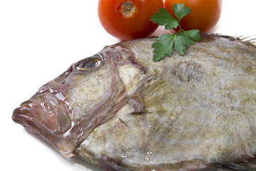 fish with tomato isolated