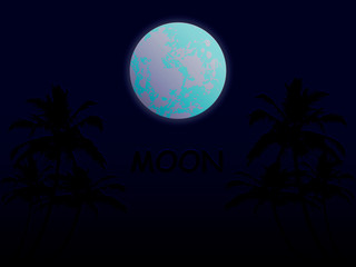 Moon on the beach, palms