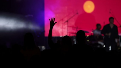 Rock Concert and the Audience