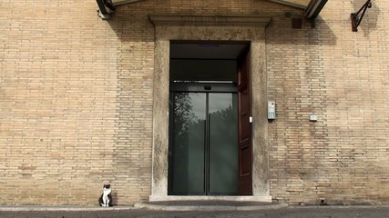 Vatican's cats at the Entrance to the Vatican Radio.