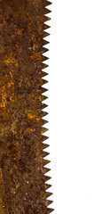 rusty saw blade on white background