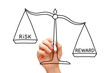 Risk Reward Scale Concept