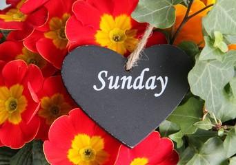 Liebe Grüße zum Sonntag