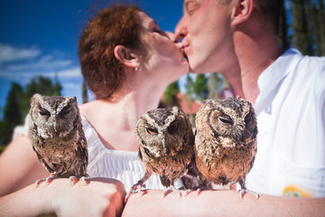 couple holding on a hand of beautiful owls