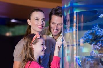 Happy family looking at fish tank