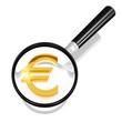 Euro unter der Lupe