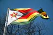 Zimbabwe Flag - 80258809