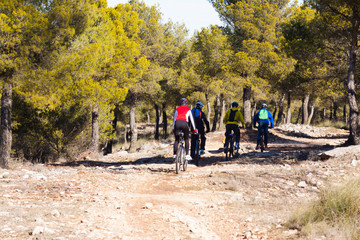 People traveling through mountains forest by bicycles
