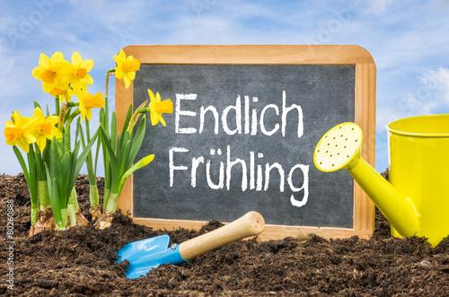 Deurstickers Narcis Schild im Blumenbeet - Endlich Frühling