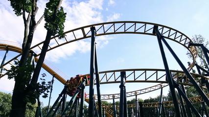 The amusement park roller coaster