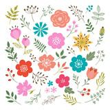 Set of floral elements - 80263255