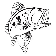 Bass fish symbol on white background,Vector.
