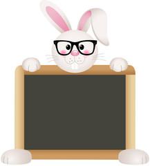 Bunny Teacher with School Board
