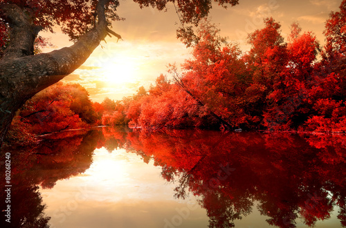 Spoed canvasdoek 2cm dik Rivier Red autumn on river
