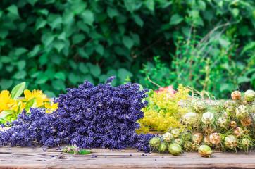 Heilpflanzen, Lavendel, Johanniskraut