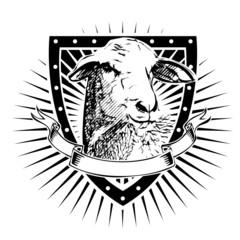 sheep shield