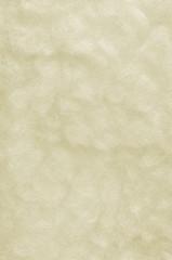 Raw Merino Sheep Wool Macro Closeup Large Detailed White Texture