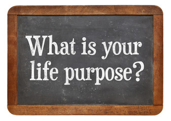 What is your life purpose ?