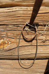 The wall of the old hut. The nail.
