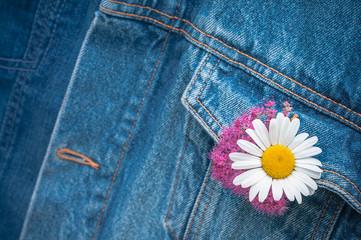Jeans mit Margerite, sommerlich, Freizeitkleidung