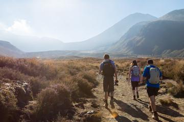 Hiking in the Tongariro National park