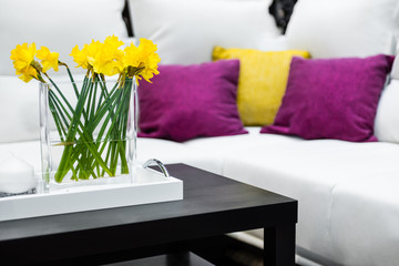 Vase with daffodil flowers in front of white sofa