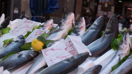 Fish market in Naples