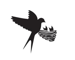 Swallow Bird Nest