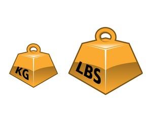 KG LBS Vector